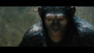 Planet der Affen: Prevolution - Trailer 1 (Full-HD) - Deutsch / German