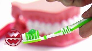 Zähne: So werden sie strahlend weiß - Welt der Wunder