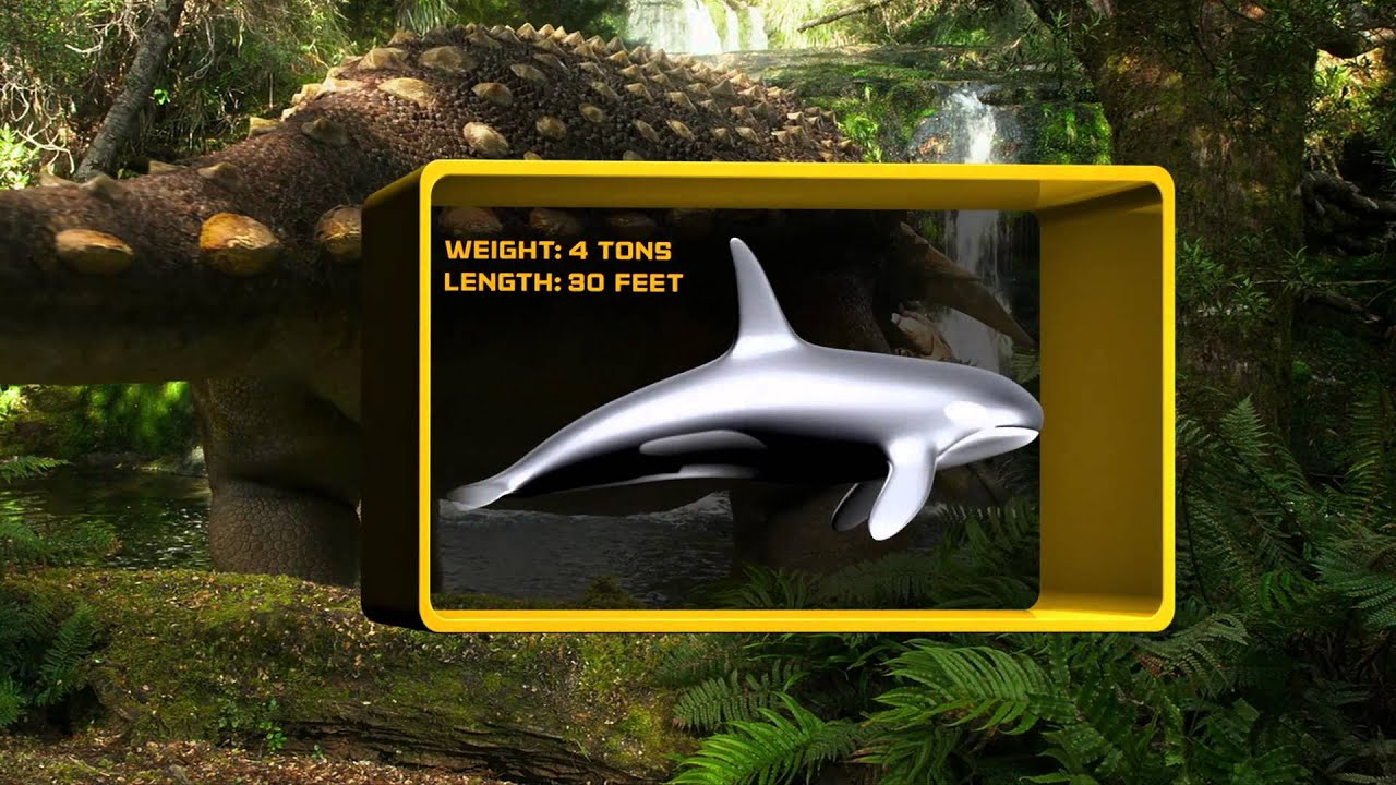 Ankylosaurus: Armored Dinosaur | Exploring Lifes Mysteries