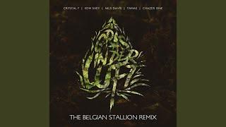 Gras in der Luft (The Belgian Stallion Remix)