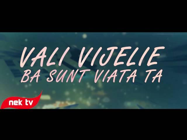 Vali Vijelie - Ba sunt viata ta [lyric video] 2014