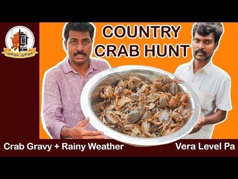 கொட்டும் மழையில் நண்டு வேட்டை  | Crab&Snail Hunt | நண்டு குழம்பு  | Mams Krishnan