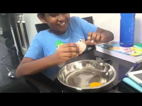 Learning about Animal Cells Membrane, Cytoplasm and Nucleus using an egg. PART 1