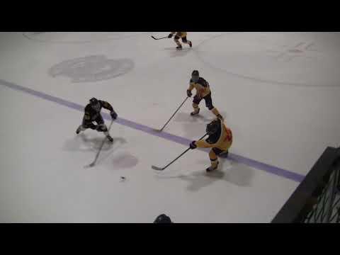 Brampton 45's Bantam A vs Harbin China Hockey Jan 21, 2018
