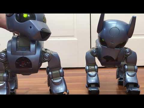 Prototype I-Cybie Robot