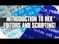 Introduction to Hex Editors and Scripting