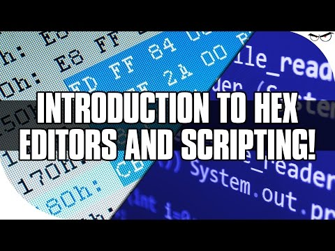 Introduction to Hex Editors and Scripting - YouTube