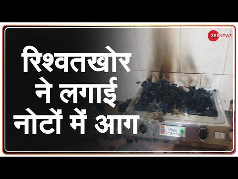 ACB से बचने के लिए Tehsildar ने जलाये 15 लाख रुपये | ACB raid | Rajasthan Latest Hindi News | Sirohi