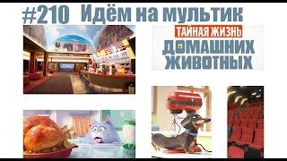 """#210 Идём на мультик """"Тайная жизнь домашних животных"""""""