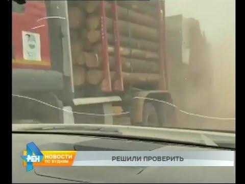 Связь возгораний с незаконными рубками проверят в Иркутской области