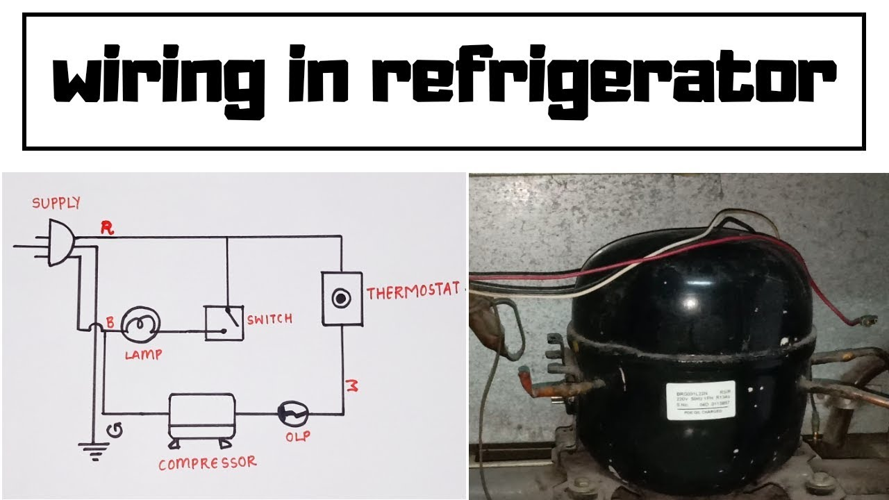 WIRING IN SINGLE DOOR REFRIGERATOR - YouTube | Refrigerator Relay Wiring Diagram |  | YouTube
