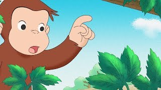 Curious George 🐵 George and Allie's Lawn Service 🐵Compilation🐵 HD 🐵 Cartoons For Children