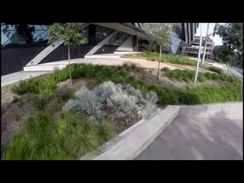Monash University's Clayton Campus Grounds