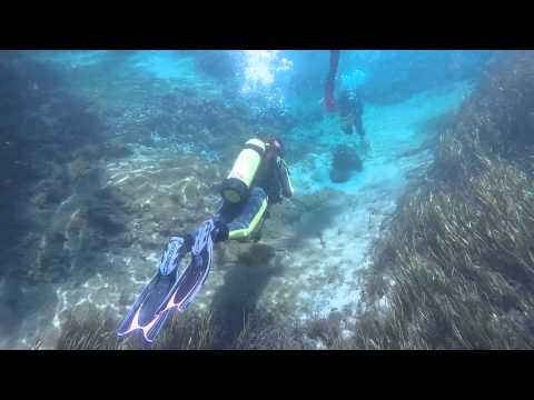 Rainbow River Check out dive May 16 2015