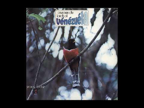 Jean C. Roché - Oiseaux du Venezuela
