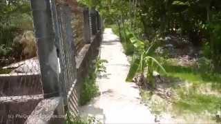 Crocodile Farm on Phu Quoc Island