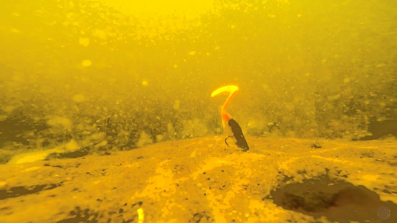 Резина Manns Ripper. Отводной поводок и джиг. Underwater - YouTube
