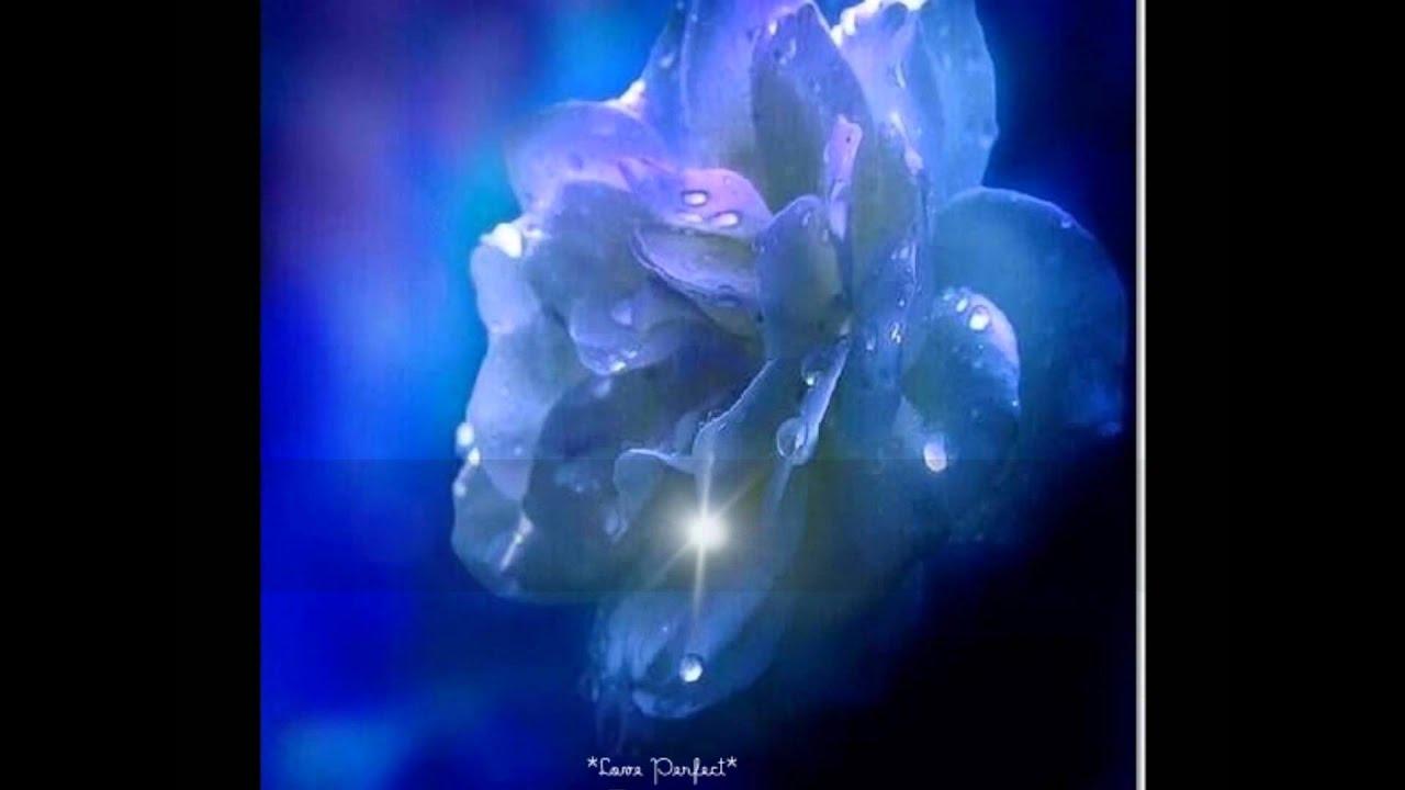 Boa Noite Muita Paz Meu Deus: Boa Noite Amor