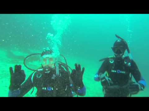 Our Dive Trips | Catalina