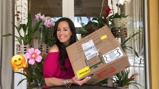 Unboxing Cattleya Orchids, Amazon Order from Hawaii, Orchid Diva