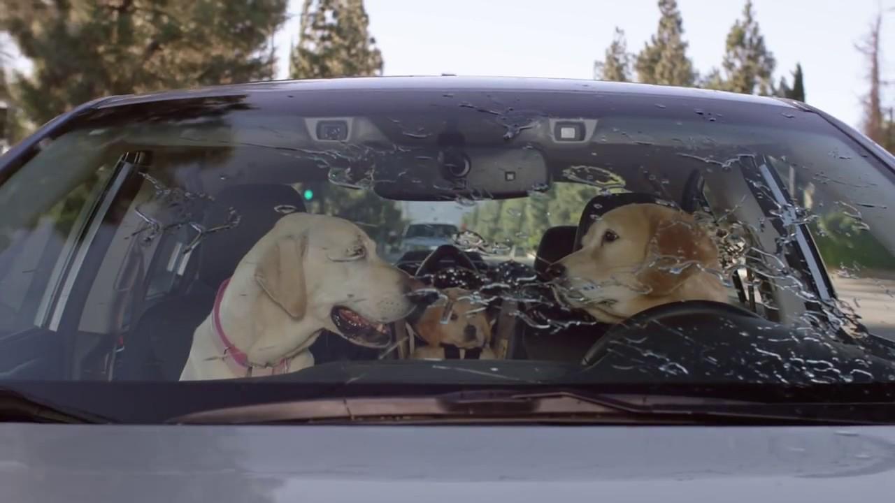 Subaru Dog Tested Subaru Commercial Windshield Wiper