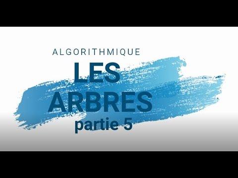 ASD: Les Arbres Partie 5 (darija)