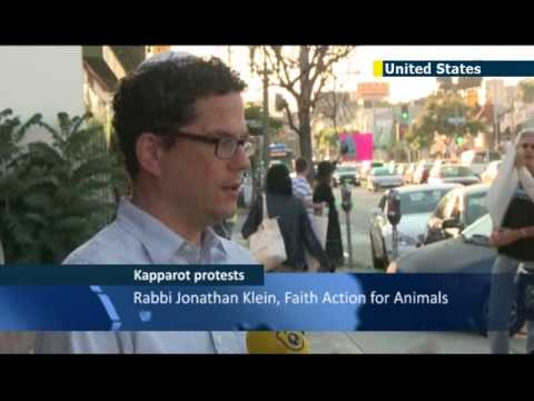 American animal rights activists protest against traditional Yom Kippur chicken slaughter ritual