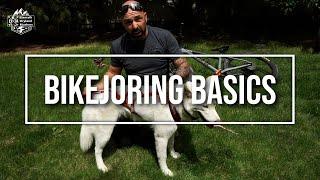 BIKEJORING BASICS - How to get started in Dryland Mushing