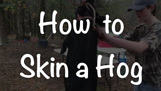How to Skin a Hog the Easy Way