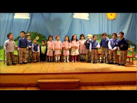KG1 Tulip Open Day & Drama Shows