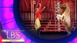 Meet Bella, The Incredible Circus Performer   Little Big Shots Australia