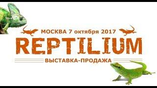 Полный видеообзор с выставки-продажи REPTILIUM (7 октября 2017)