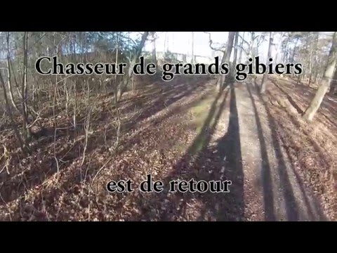 CHASSE AU GRAND GIBIER