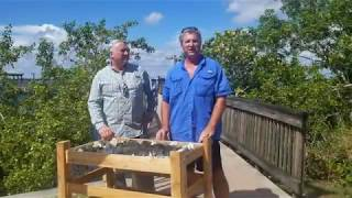 Florida Fishery Foundation Installs 100% Natural Oyster Habitats in the Caloosahatchee