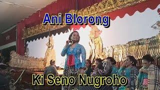 """Download Mp3 Limbukan Ki Seno Nugroho """"lewung"""" Ani Blorong"""