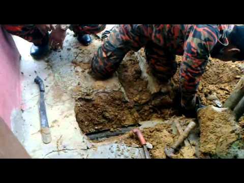 Anggota Bomba Muadzam Shah Sedang Menangkap Ular Tedung.mp4