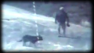 Cop Attacks Dog In Horrific Video
