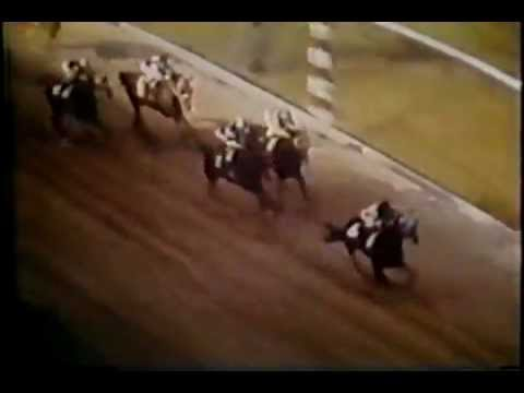 Secretariat - Preakness Stakes 1973
