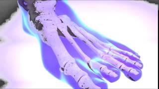 Clinique du pied de Québec-  orthoplastie