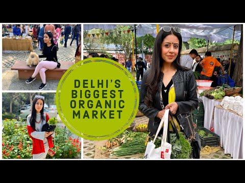 BIGGEST ORGANIC MARKET IN DELHI|ORGANIC FOOD & PRODUCTS|ORGANIC MARKET|Shivani Trehan|Social Craving