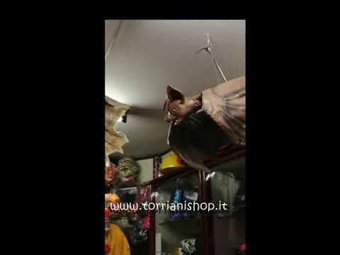 arriva nuovo prezzi al dettaglio compra meglio Torriani la Bottega del Carnevale tutto Halloween - YouTube
