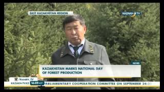 В Казахстане отмечают Национальный день посадки леса(, 2015-09-23T11:19:22.000Z)