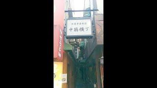 Osaka (大阪市, Ōsaka-shi) (Japanese pronunciation: [oːsakaɕi]; list...