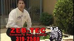 ZebTec Termites RevEmail_Squeeze001.wmv