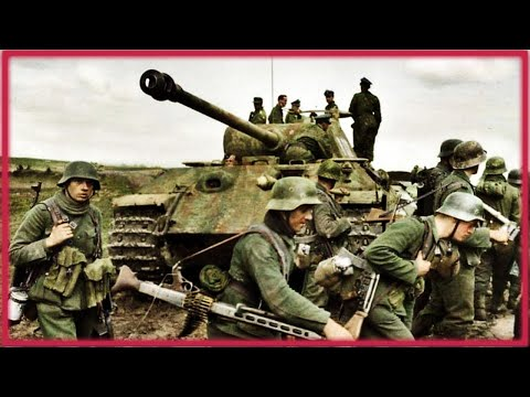 """The 5th SS Panzer Division """"Wiking"""" 