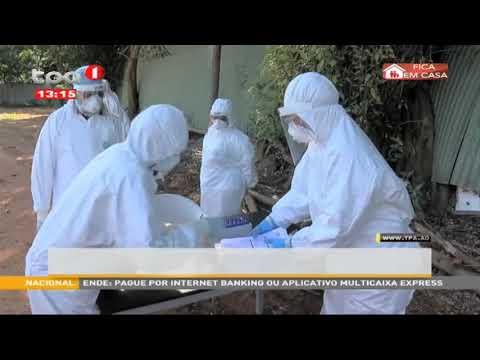 Angola com a primeira suspeita de infecção comunitária