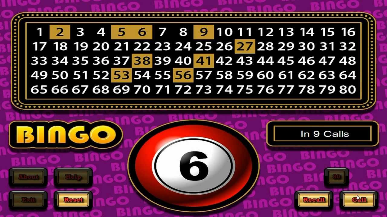 bingo game software