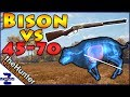 watch he video of 45-70 Bison Hunt Call of the Wild TheHunter