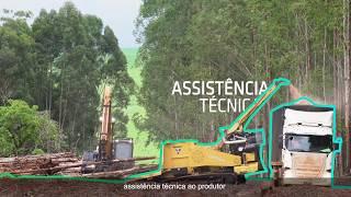 Gambar cover Cerradinho Bioenergia - Projeto Etanol de Milho - Legendado PT