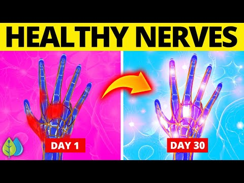 ⚡Top 10 Best Foods for Your Nervous System (Neuropathy Remedies)